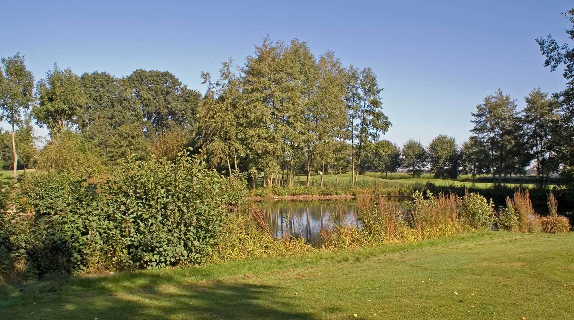 https://golfclub-peckeloh.de/wp-content/uploads/2018/02/PICT0259-3.jpg