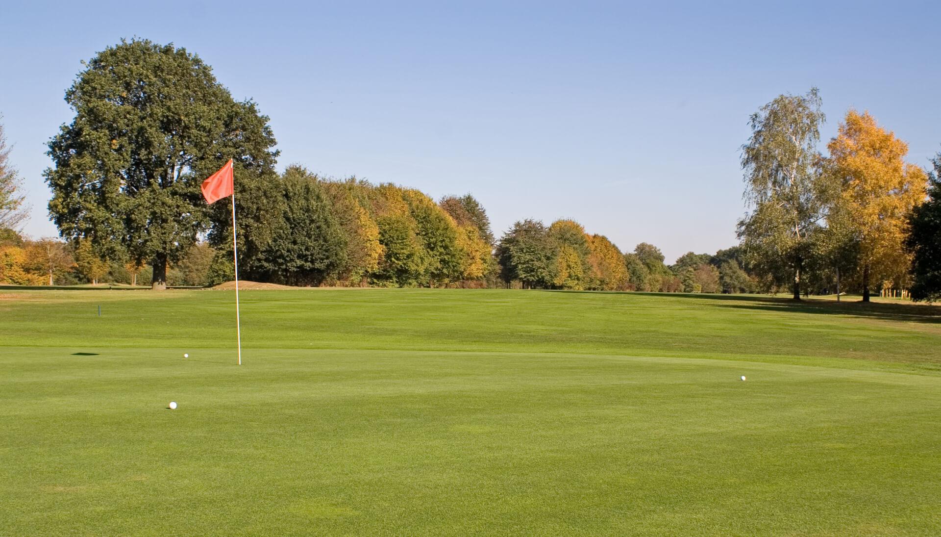 https://golfclub-peckeloh.de/wp-content/uploads/2018/02/PICT0282.jpg