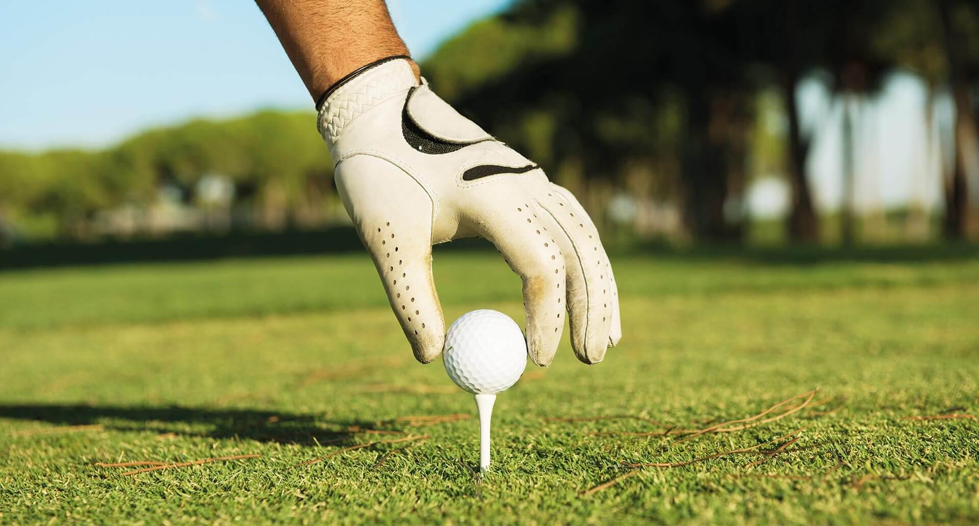 https://golfclub-peckeloh.de/wp-content/uploads/2018/11/greenfee_header-2.jpg