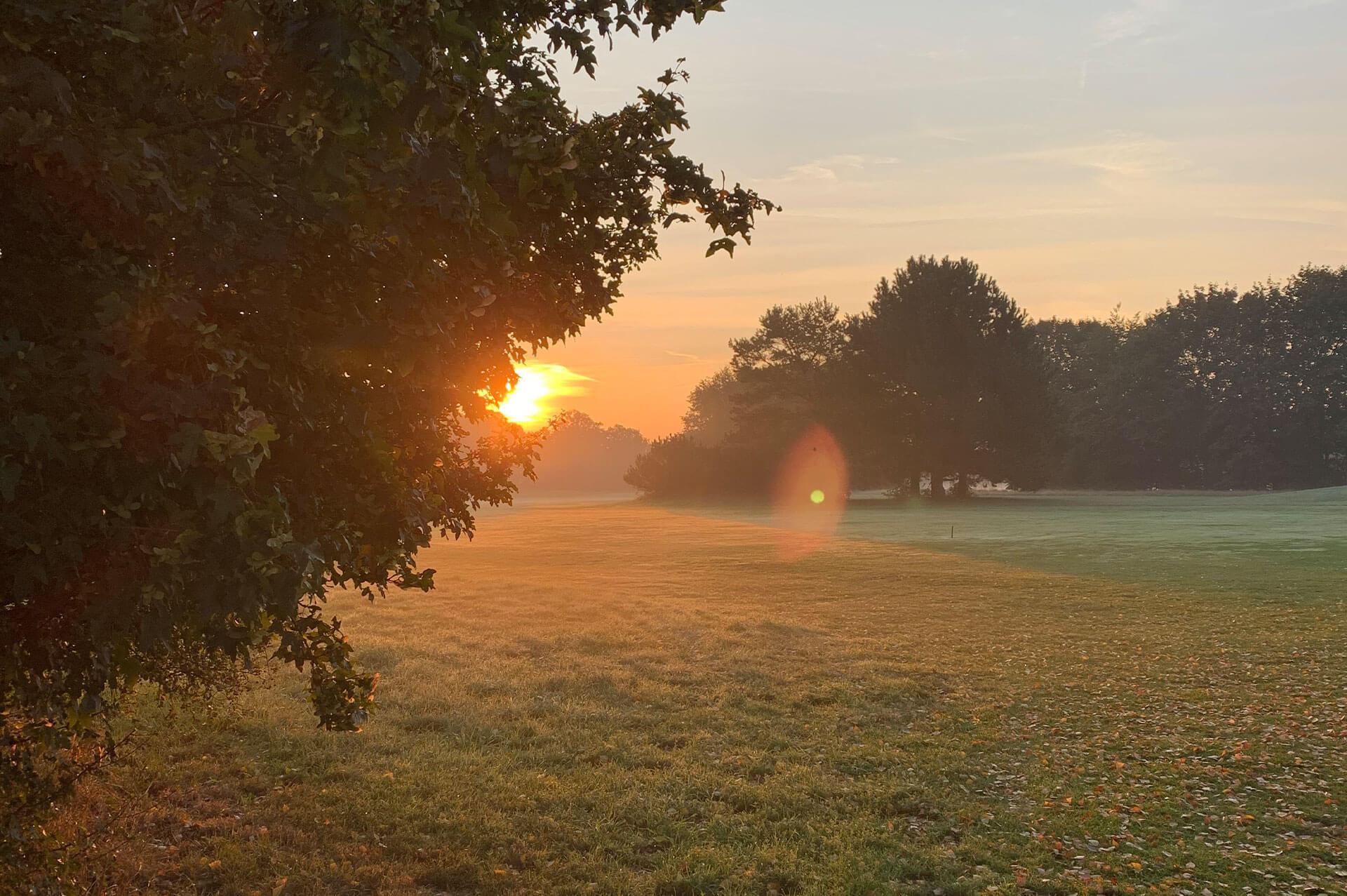 https://golfclub-peckeloh.de/wp-content/uploads/2020/10/Header_Sonnenuntergang.jpg