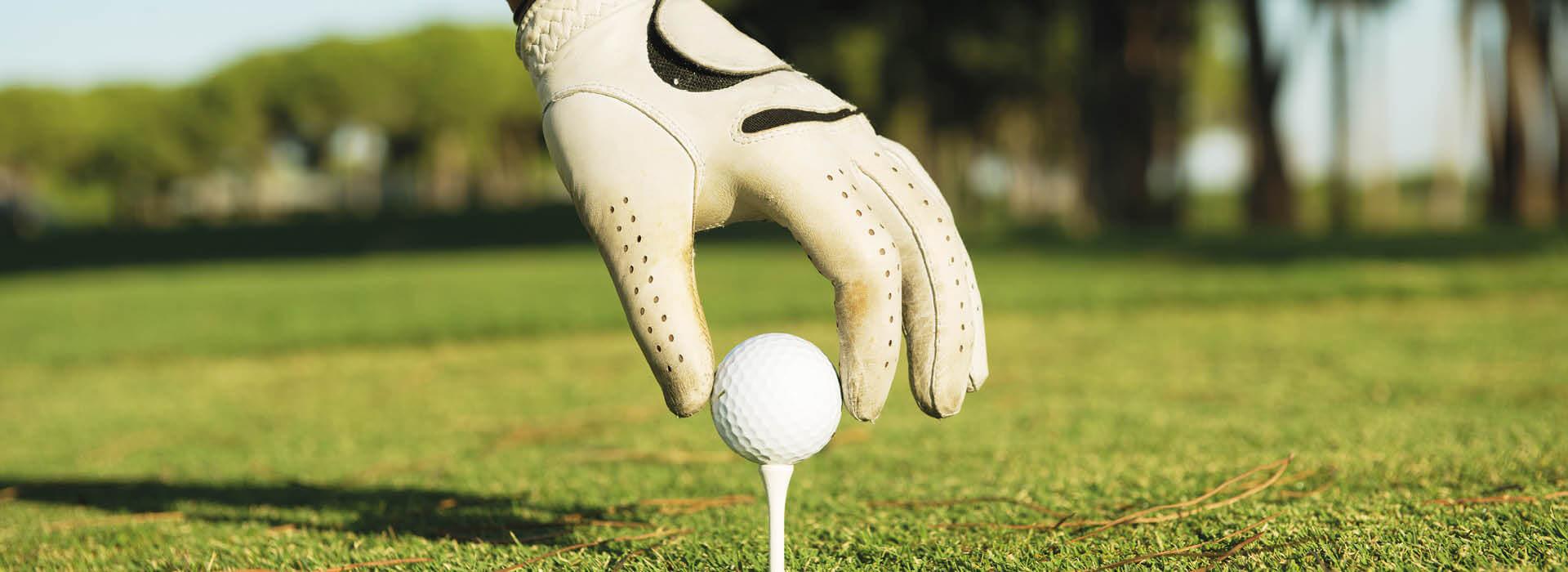 https://golfclub-peckeloh.de/wp-content/uploads/2021/02/GOPE21-073_Header_1920_x_700px2.jpg