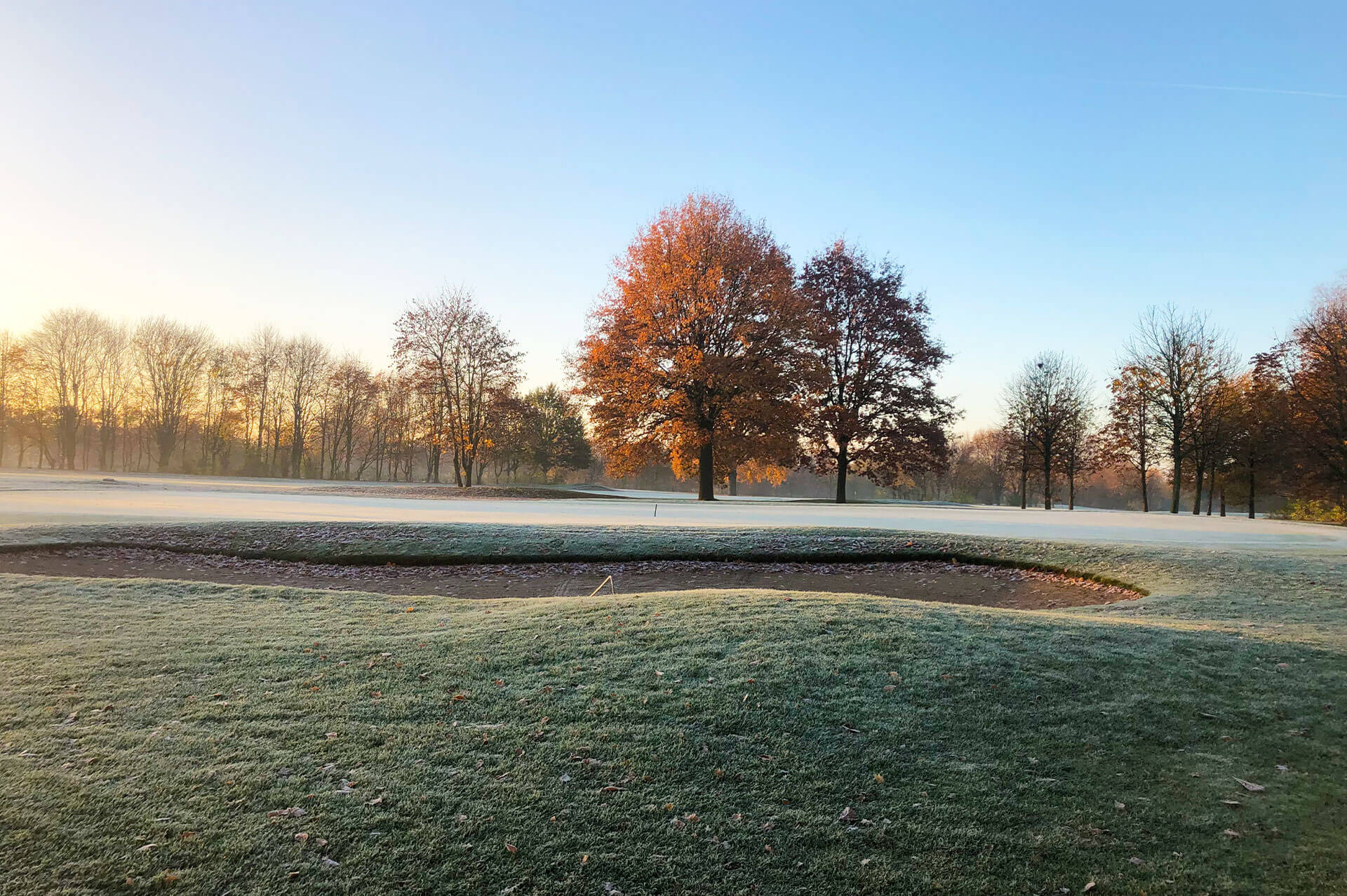 https://golfclub-peckeloh.de/wp-content/uploads/2021/02/Galeriebilder_1920_x_1277px-5.jpg