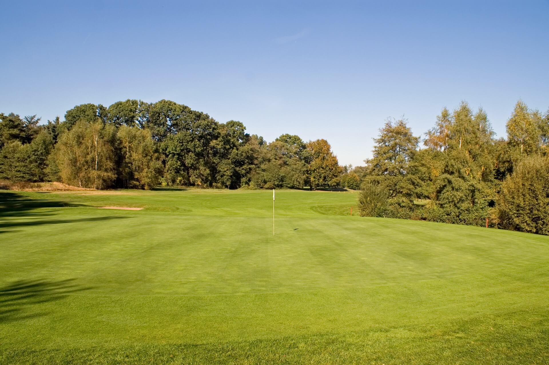 https://golfclub-peckeloh.de/wp-content/uploads/2021/04/PICT0263.jpg